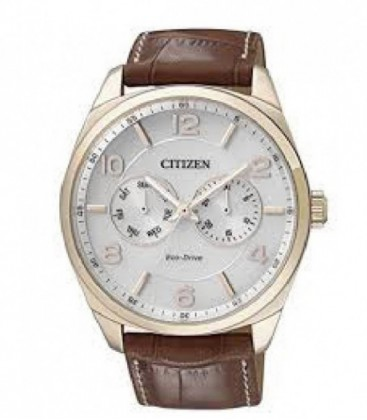 Reloj Citizen Eco Drive Analogico Hombre Ref: AO9024-16A